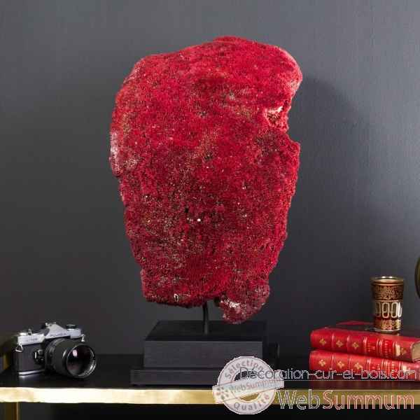 corail rouge tubipora musica objet de curiosit co320 9 de curiosit naturelle. Black Bedroom Furniture Sets. Home Design Ideas