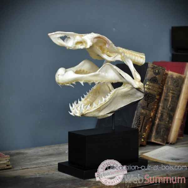 Achat de requin sur d coration cuir et bois for Requin decoration