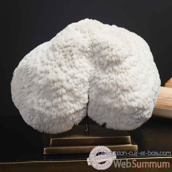 Corail blanc bowl (mm) Objet de Curiosite -CO350-11